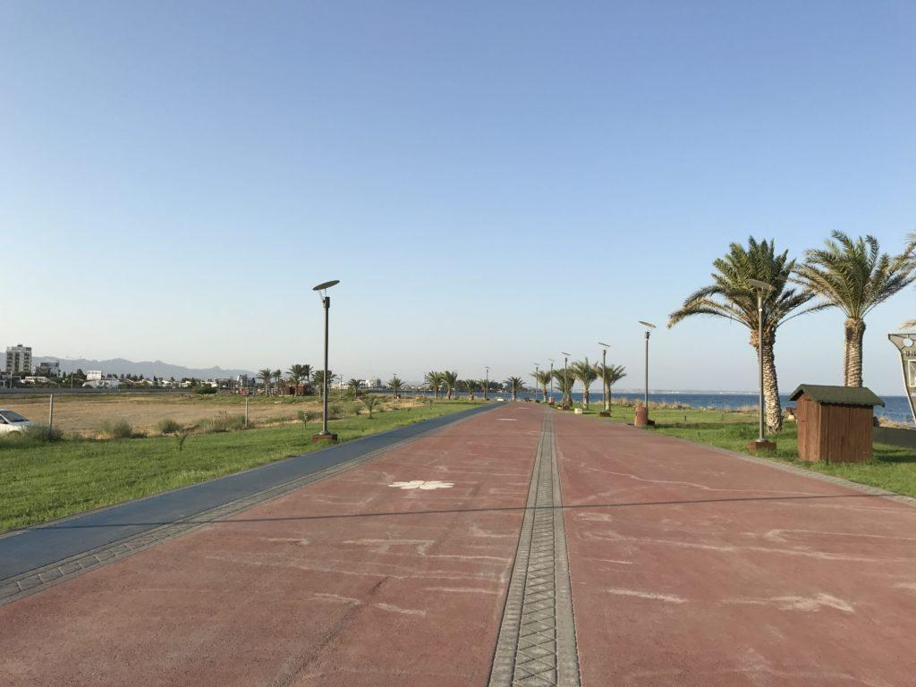 Пальмы вдоль пляжа